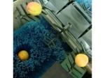 фото Линия для сортировки фруктов PLUMONE